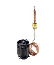 >Терморегуляторы воды RAVK