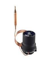 >Терморегуляторы воды RAVV